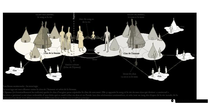 Structure-Schemas